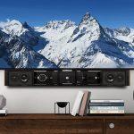 Leon Speakers, Horizon Interactive FIT
