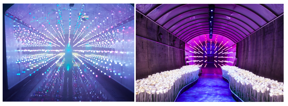 Harman Suyanggae, SuyanggaeLightTunnel, multimedia tunnel, Media-Façade