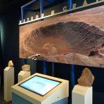 Meteor Crater, Alcorn McBride DMX