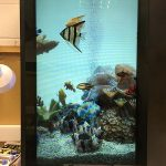 Crystal Display Systems, ClearVue 3DP, TransparentLCD