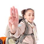 Girl Scouts, virtual brownie