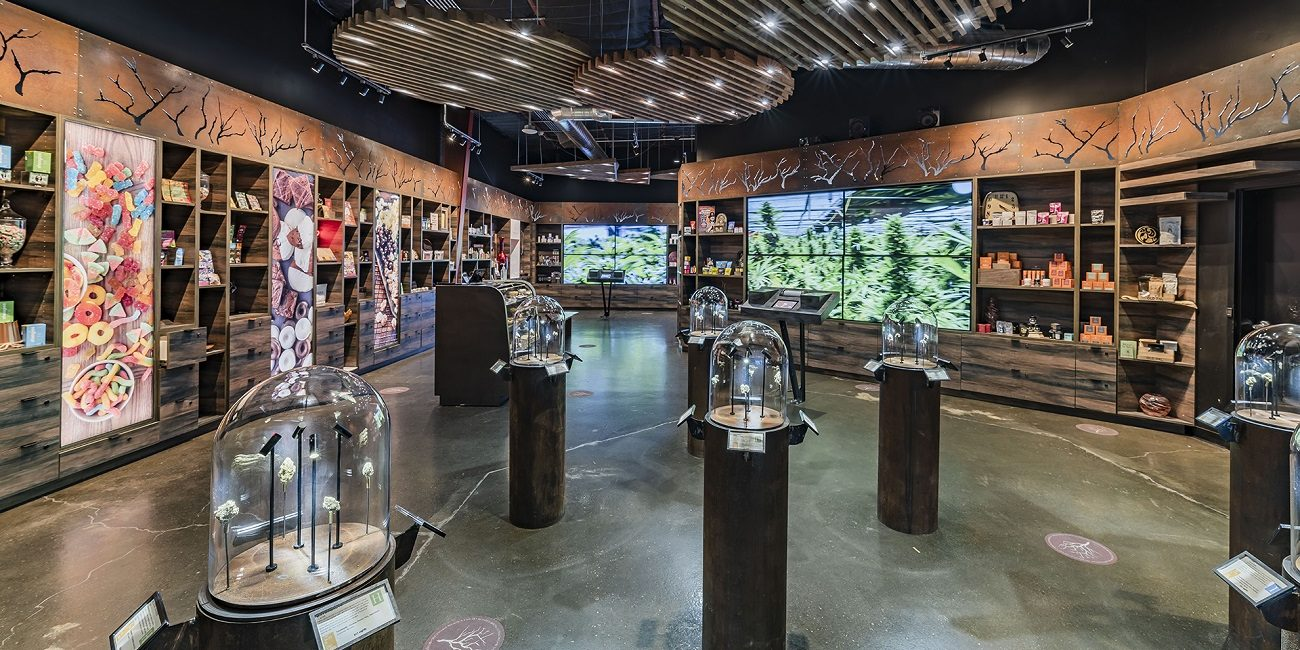 Solutionz's Digital Signage Project Increases Engagement At California Cannabis Dispensary